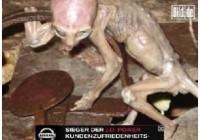 天下未解之谜 揭秘外星人真实存在的证据(图)